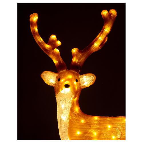 Illuminazione Renna Marrone 120 Led luce calda 84 cm  3