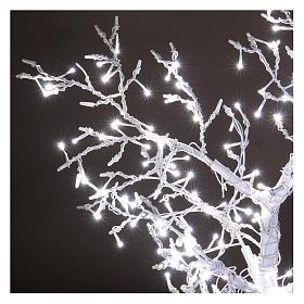 Albero luminoso Natalizio metallo 90 cm 210 LED bianco freddo esterno s3