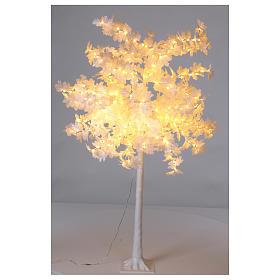 Luzes de Natal: Árvore luminosa Natal bordo 180 cm 400 LED branco quente  exterior