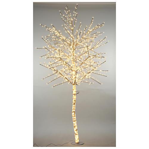 Albero ciliegio luminoso 300 cm bianco caldo corrente 1