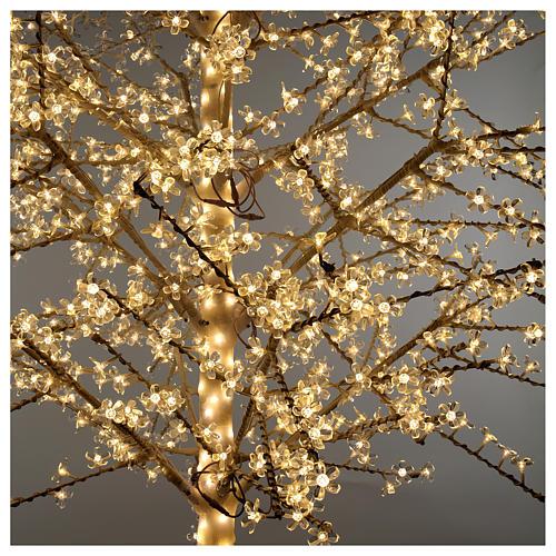 Albero ciliegio luminoso 300 cm bianco caldo corrente 4