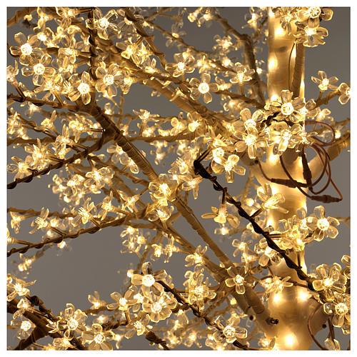 Albero ciliegio luminoso 300 cm bianco caldo corrente 6