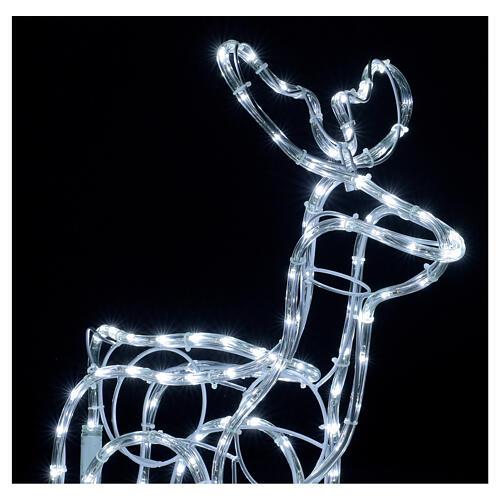 Renna natalizia bianco freddo 120 led h 55 cm corrente 2