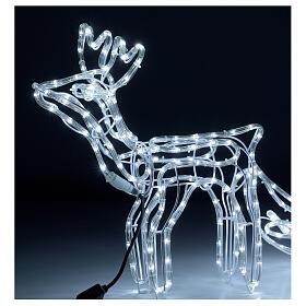 Renne traîneau 264 LED blanc froid h 52 cm courant EXTÉRIEUR s2