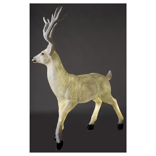 Luce Natale cervo LED bianco per esterni 105x85x65 cm 6