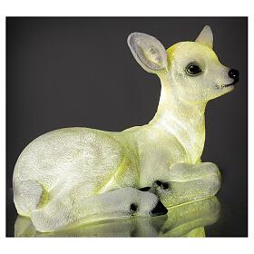 Luce natalizia cerbiatto seduto LED bianco 35x50x25 cm s4