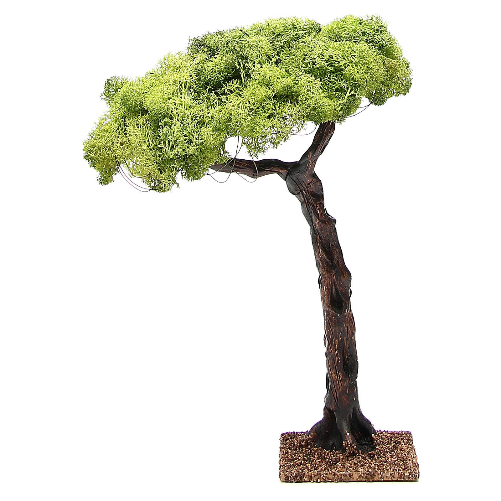 Chêne pour crèche 35cm 4
