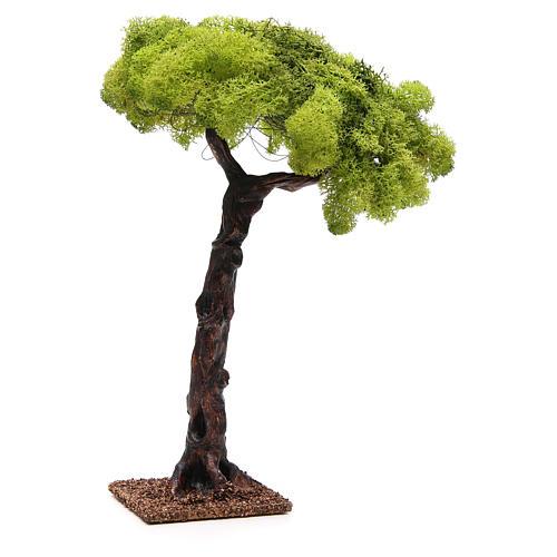 Chêne pour crèche 35cm 2
