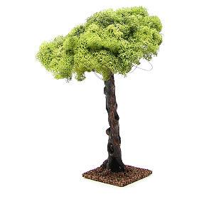 Oak tree for nativity scene, 35cm s4