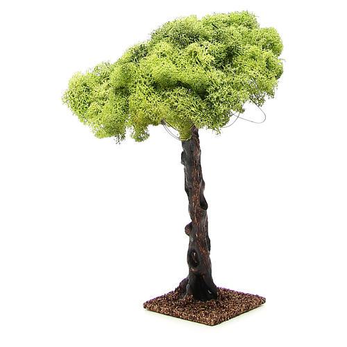 Oak tree for nativity scene, 35cm 4