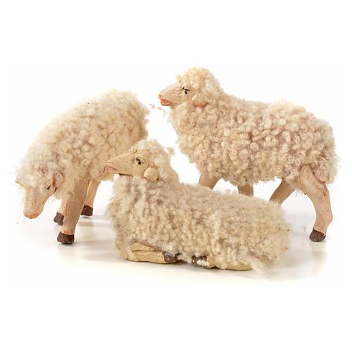 Neapolitan Nativity scene figurine, kit, 3 sheep with wool 14 cm 1