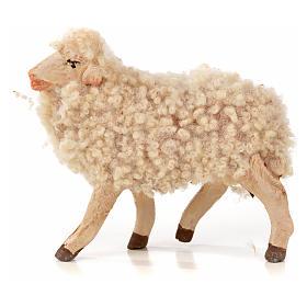 Lot 3 brebis avec laine crèche Napolitaine 14cm s2