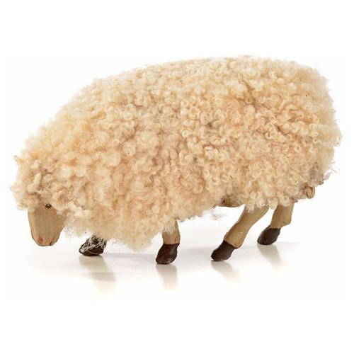 Lot 3 brebis avec laine crèche Napolitaine 18cm 3