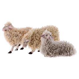Kit 3 pecore con lana 18 cm presepe napoletano s1