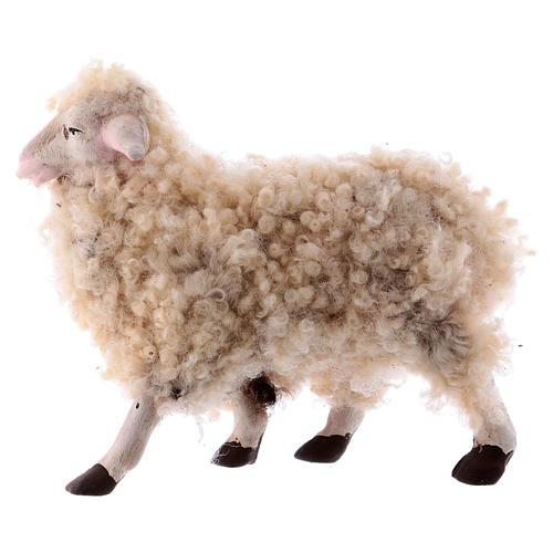 Kit 3 pecore con lana 18 cm presepe napoletano 2