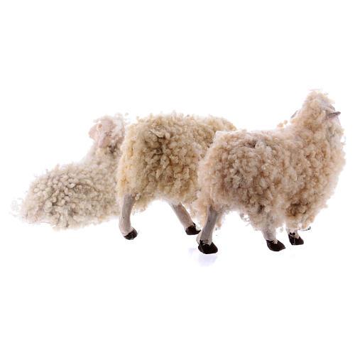Kit 3 pecore con lana 18 cm presepe napoletano 5