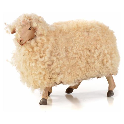 Neapolitan Nativity scene figurine, kit, 3 sheep with wool 18 cm 2