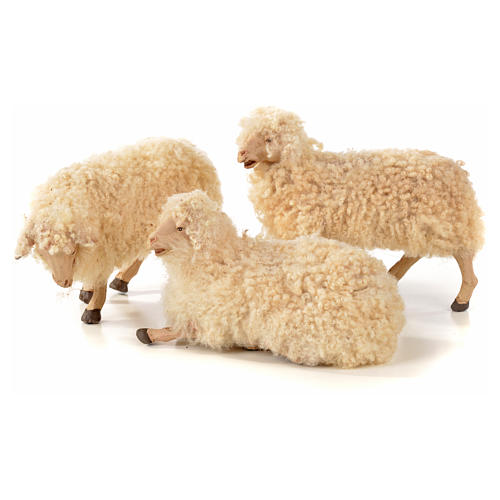 Neapolitan Nativity scene figurine, kit, 3 sheep with wool 1