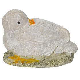 Nativity figurine, duck 8-10-12 cm s2