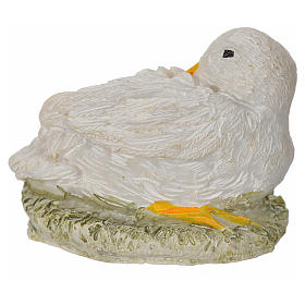 Nativity figurine, duck 8-10-12 cm s1