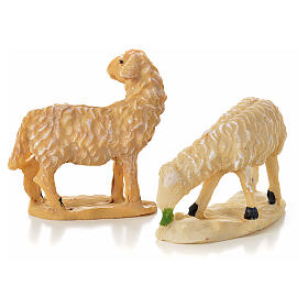 Nativity figurine, sheep 10 - 15 cm s2