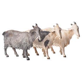 Belén Moranduzzo: Cabras, 3 pdz, para belén de Moranduzzo con estatuas de 10 cm.
