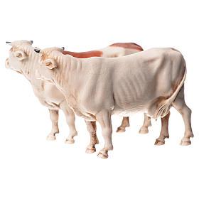 Mucche assortite 2 pz Moranduzzo 10 cm s2