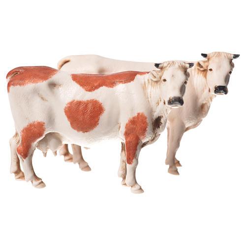 Mucche assortite 2 pz Moranduzzo 10 cm 1