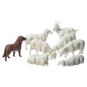Belén Moranduzzo: Cabra, perro y oveja, 8 pdz, para belén de Moranduzzo con estatuas de 10 cm.