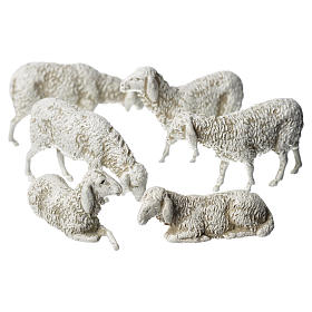 Ovejas, 6 pdz, para belén de Moranduzzo con estatuas de 8 cm s1
