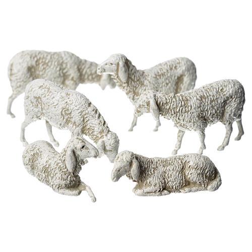 Ovejas, 6 pdz, para belén de Moranduzzo con estatuas de 8 cm 1