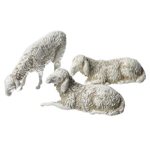 Ovejas, 6 pdz, para belén de Moranduzzo con estatuas de 8 cm 2