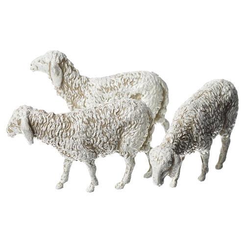Ovejas, 6 pdz, para belén de Moranduzzo con estatuas de 8 cm 3