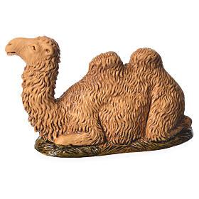 Camel kneeling down 6cm Moranduzzo s2