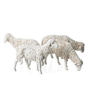 Ovelhas 4 peças para Presépio Moranduzzo com figuras de altura média 12 cm s1