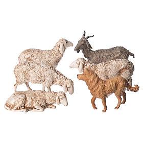 Belén Moranduzzo: Ovejas, cabra y perro 6 figuras para Belén de Altura Media 13 cm Moranduzzo