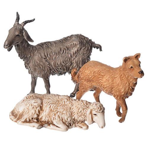 Ovejas, cabra y perro 6 figuras para Belén de Altura Media 13 cm Moranduzzo 3