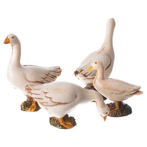 Ducks 10cm Moranduzzo collection 2