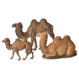 Belén Moranduzzo: Camellos belén 3,5-6 cm Moranduzzo