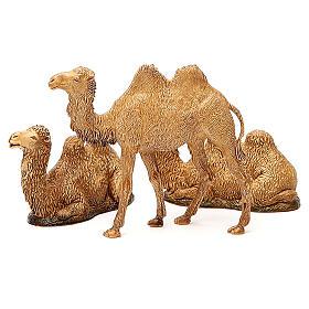 Camelos 3 peças para Presépio Moranduzzo com figuras de altura média 8-10 cm s2