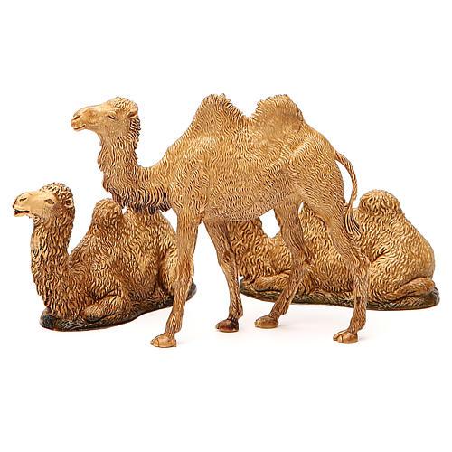 Camelos 3 peças para Presépio Moranduzzo com figuras de altura média 8-10 cm 7