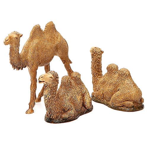 Camelos 3 peças para Presépio Moranduzzo com figuras de altura média 8-10 cm 1