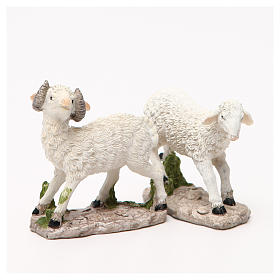 Sheep nativity figurine 18cm, assorted models s7