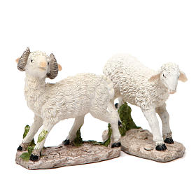 Sheep nativity figurine 18cm, assorted models s2