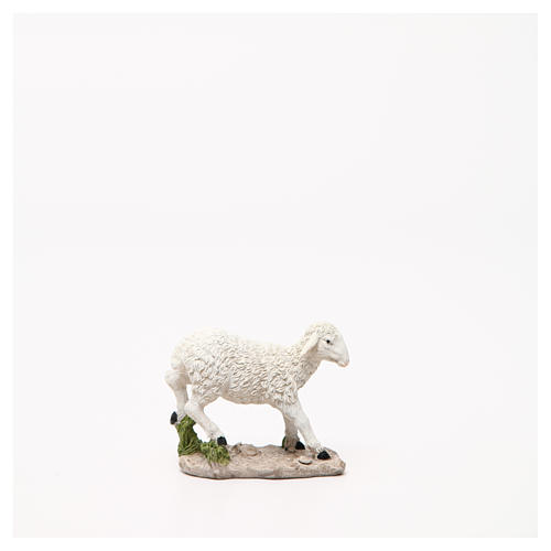 Sheep nativity figurine 18cm, assorted models 3