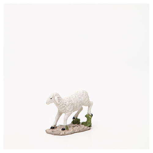 Sheep nativity figurine 18cm, assorted models 5
