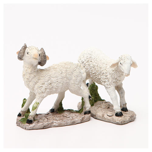 Sheep nativity figurine 18cm, assorted models 7