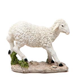 Mouton pour crèche 18cm s1