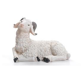 Animals for Nativity Scene: Sheep nativity figurine in resin 30/40cm