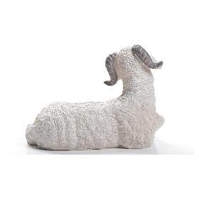 Sheep nativity figurine in resin 30/40cm s3